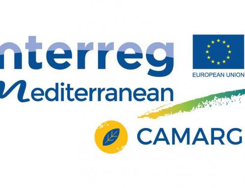 First Newsletter del Proyecto Interreg-MED CAMARG con detalle de las Actividades llevadas a cabo por las Entidades Socias