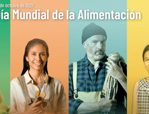 16 Octubre Día mundial de la alimentación!!